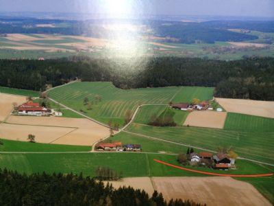 Frontenhausen Bauernhöfe, Landwirtschaft, Frontenhausen Forstwirtschaft
