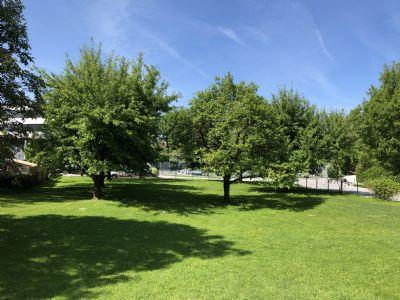 Oberndorf bei Salzburg Grundstücke, Oberndorf bei Salzburg Grundstück kaufen