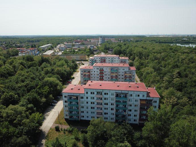 Erstbezug nach Renovierung | 3-Raumwohnung im EG | 2 Balkone | freie Parkplätze