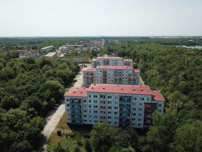 Sandersdorf Wohnungen, Sandersdorf Wohnung mieten