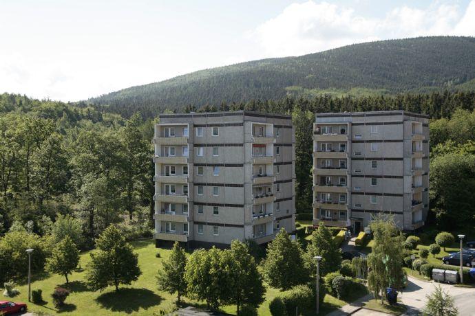 sanierte Singlewohnung mit Balkon in Waldnähe