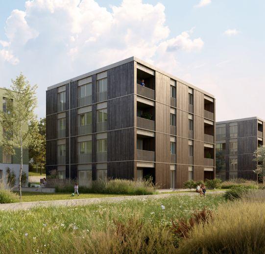 seven- Penthouse über dem Safranberg
