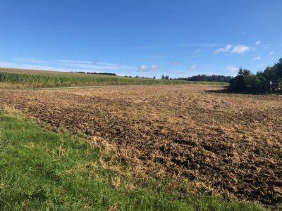 Baugrundstück Orts- und Feldrandlage unverbaubar kein Bauzwang erschlossen