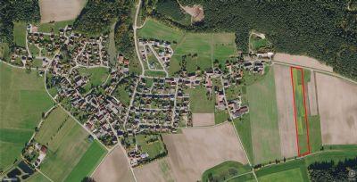 Haundorf Bauernhöfe, Landwirtschaft, Haundorf Forstwirtschaft