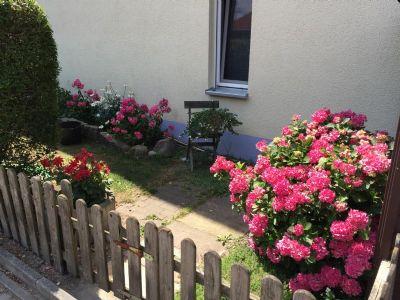Gepflegte Gartenanlagen