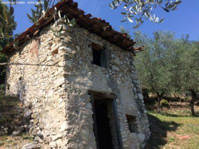 Gardasee-Tignale-Rustico mit Olivenhain Grundstück Tignale ...