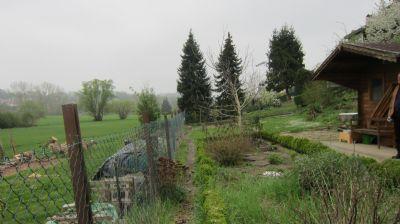 Garten mit Gartenhaus