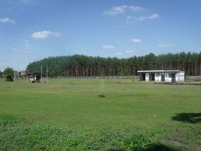 Blick auf Weideland und z.T. Wald zum Zukauf  (3)