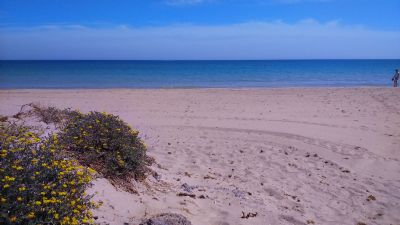 San Javier Murcia Grundstücke, San Javier Murcia Grundstück kaufen