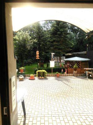 große Terrasse hinterm Haus zum Garten