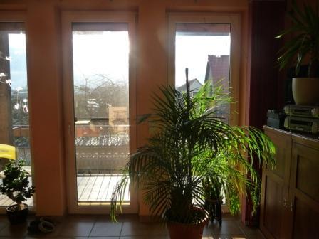 Sonnige geräumige 2-Zimmer-Wohnung mit Balkon