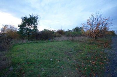 Grundstück (Blick 5)
