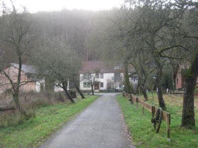 Reinhardshagen Bauernhöfe, Landwirtschaft, Reinhardshagen Forstwirtschaft