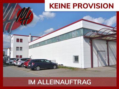 Flörsheim Halle, Flörsheim Hallenfläche