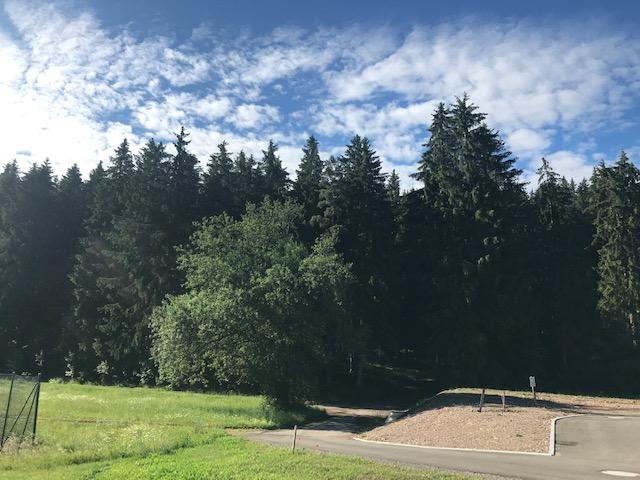 Großzügig terrassiert - direkt am Waldrand