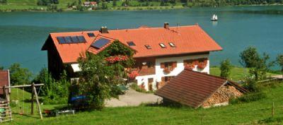 Landhaus Sinz überm See - Ferienwohnung - Hornblick****