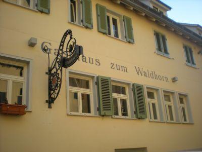 Willkommen im Waldhorn
