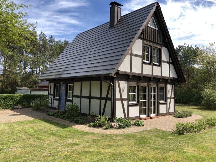 Ein Schmuckstück! Modernes Ferienhaus auf Usedom / Quilitz
