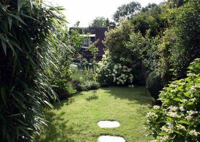 schön bepflanzter Garten