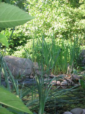 Garten der Ruhe