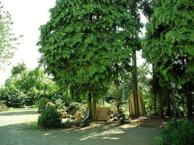 4 Garten 008