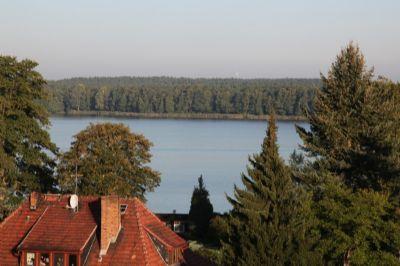 Blick vom Wintergarten