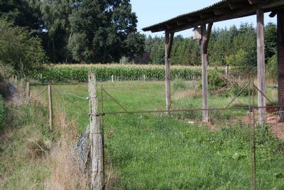 Blick auf einen Teil des Grundstücks
