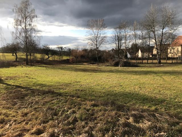 Baugrundstück für Villa mit unverbaubarem Blick zu verkaufen - Ortsrandlage - am Fuß des Glatzenstein -