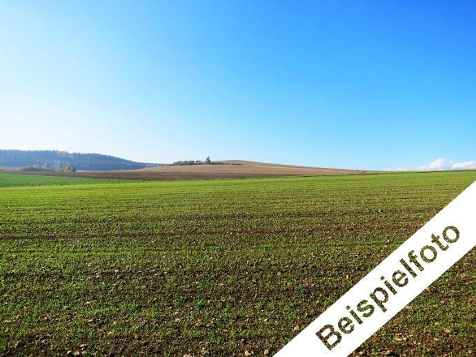 1/2 Miteigentumsanteil an Landwirtschaftsflächen bei Wehretal
