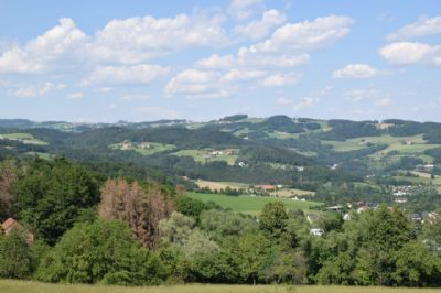 Linz / Pöstlingberg Grundstücke, Linz / Pöstlingberg Grundstück kaufen
