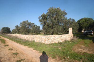 Manduria Grundstücke, Manduria Grundstück kaufen