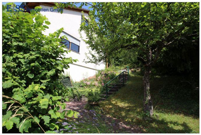 Freistehendes Einfamilienhaus mit großem Garten in Emmingen