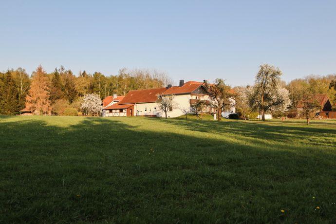 exklusives 2-Familienhaus in fast Alleinlage im Einklang mit der Natur
