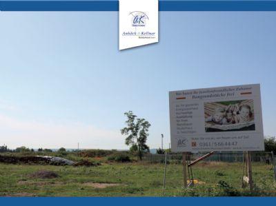 Bauen am Ringelberg - Großes Grundstück für Ihr Traumhaus