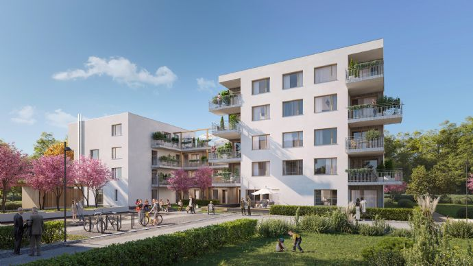 2 Zimmer Wohnung in Waldshut-Tiengen