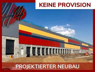 Bad Homburg vor der Höhe Halle, Bad Homburg vor der Höhe Hallenfläche