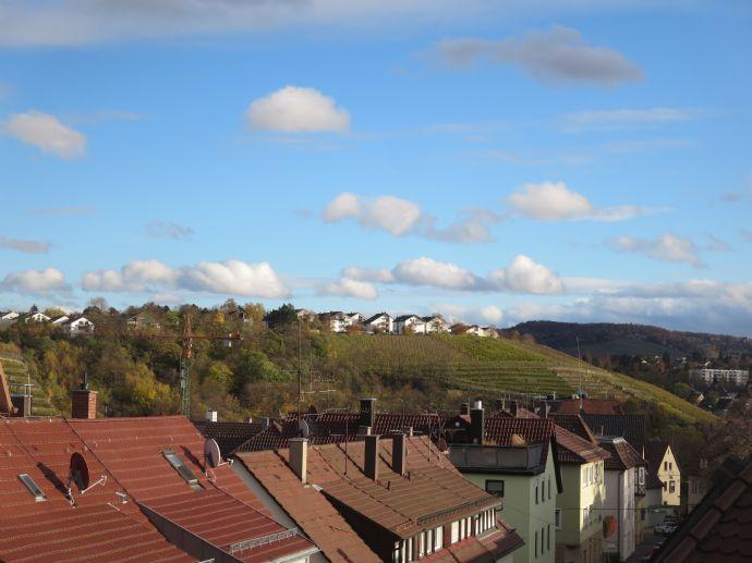 fantastische Aussichtslage - Maisonette-Dachgeschoss-Wohnung samt Dachterrasse (Fußbodenheizung, etc.)