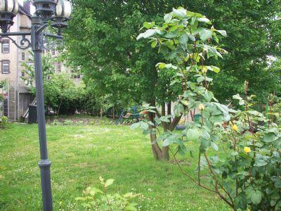 Bild 5: Garten