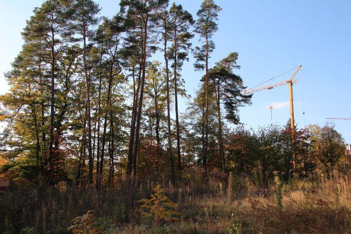 Voll erschlossenes Baugrundstück für DHH in Burgthann