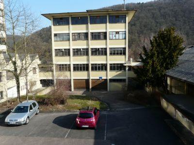 Wertheim Halle, Wertheim Hallenfläche