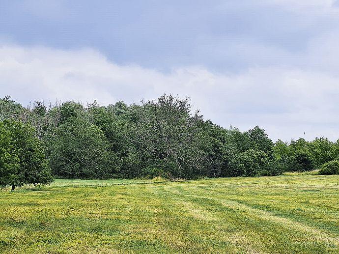 unbebaute Grundstücke