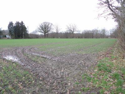Kisdorf Bauernhöfe, Landwirtschaft, Kisdorf Forstwirtschaft