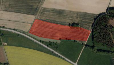 Gachenbach Bauernhöfe, Landwirtschaft, Gachenbach Forstwirtschaft