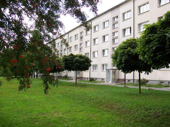 Schöne und günstige 2-Zimmer-Wohnung mit Loggia/Balkon in Neustadt i.Sa.