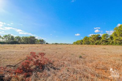 Campos Grundstücke, Campos Grundstück kaufen