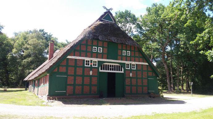 1 großes Bauernhaus Reetdach Giessform