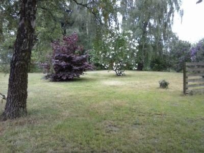 Garten hinterer Teil