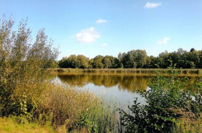 Falkensee-Seenähe: Großzügiges, sonniges Grundstück in idealer Westausrichtung