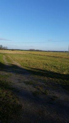 Ebenes Baugrundstück in ruhiger Ortslage unweit von Bad Liebenwerda