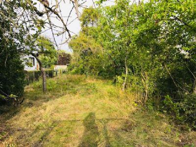 Sonniges Einzelgrundstück in ruhiger, grüner Siedlungslage in Mahlsdorf-Nord